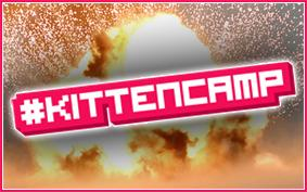 #KittenCamp Manchester September 2012