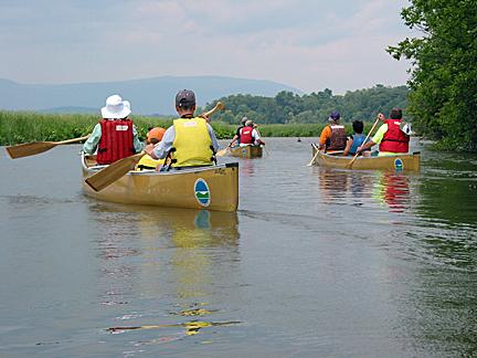 Group paddling at Tivoli North Bay.